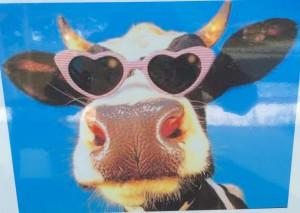 Die Kuh in Dir.